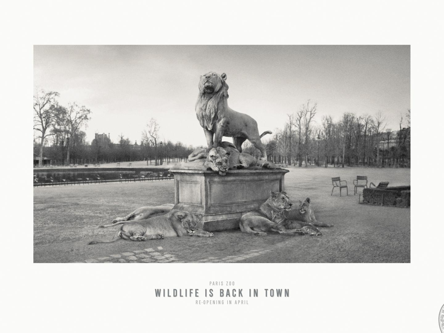 Image for Jardin des Tuileries