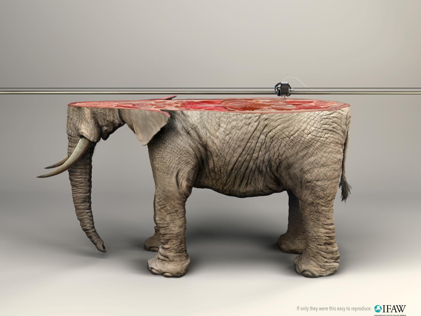 Image for 3D Printer/ELEPHANT