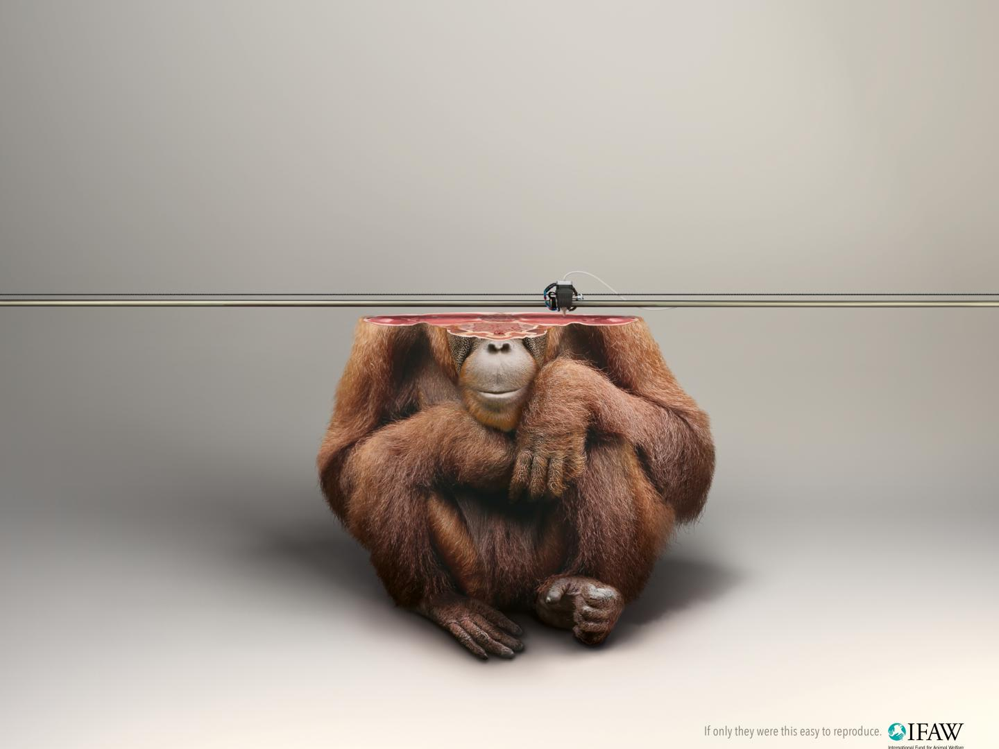 Image for 3D Printer/ORANGUTAN