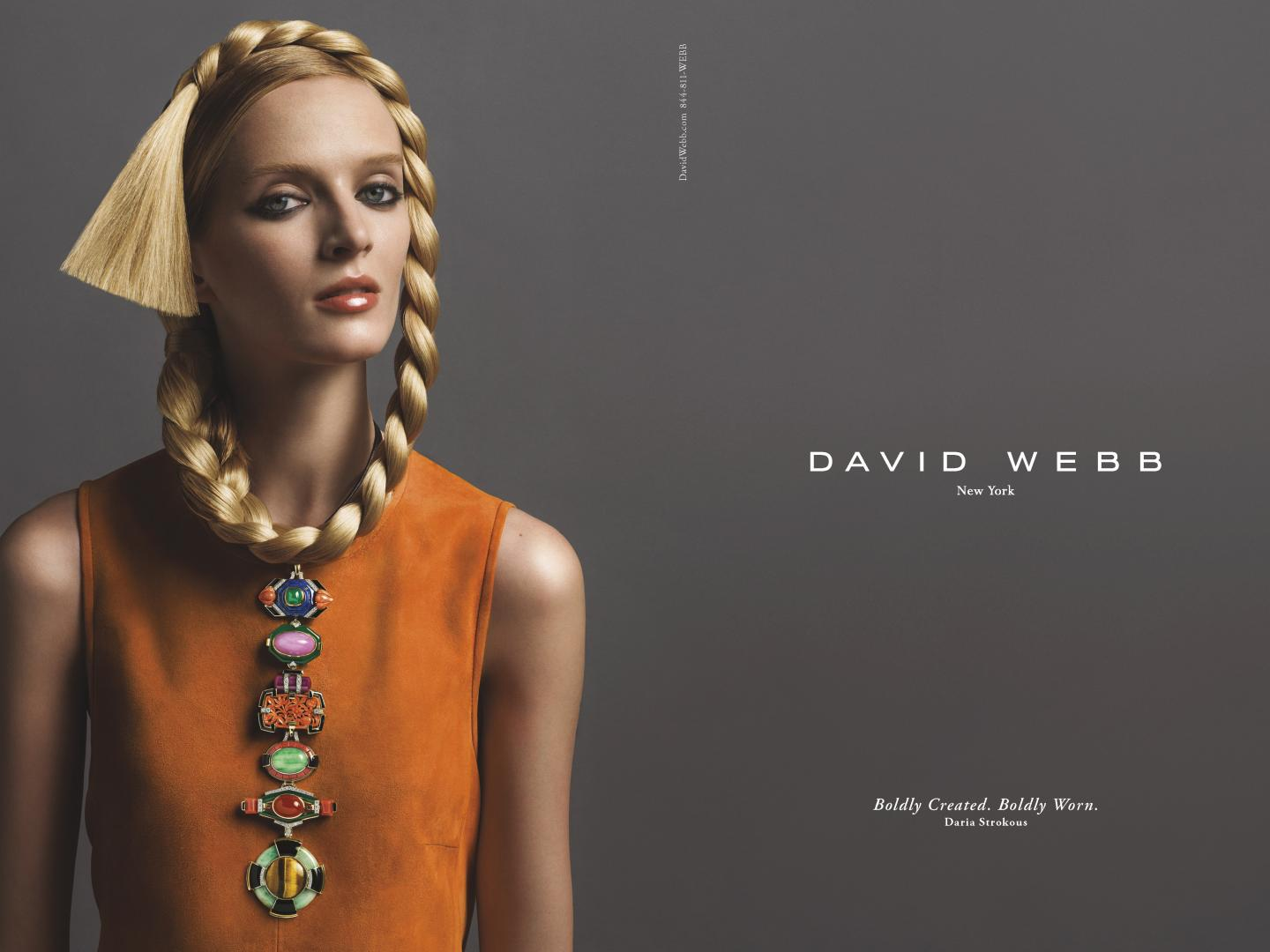Image for David Webb